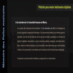 Petición para enviar testimonios digitales